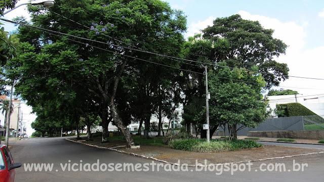 Avenida Maurício Cardoso, com amplo canteiro arborizado