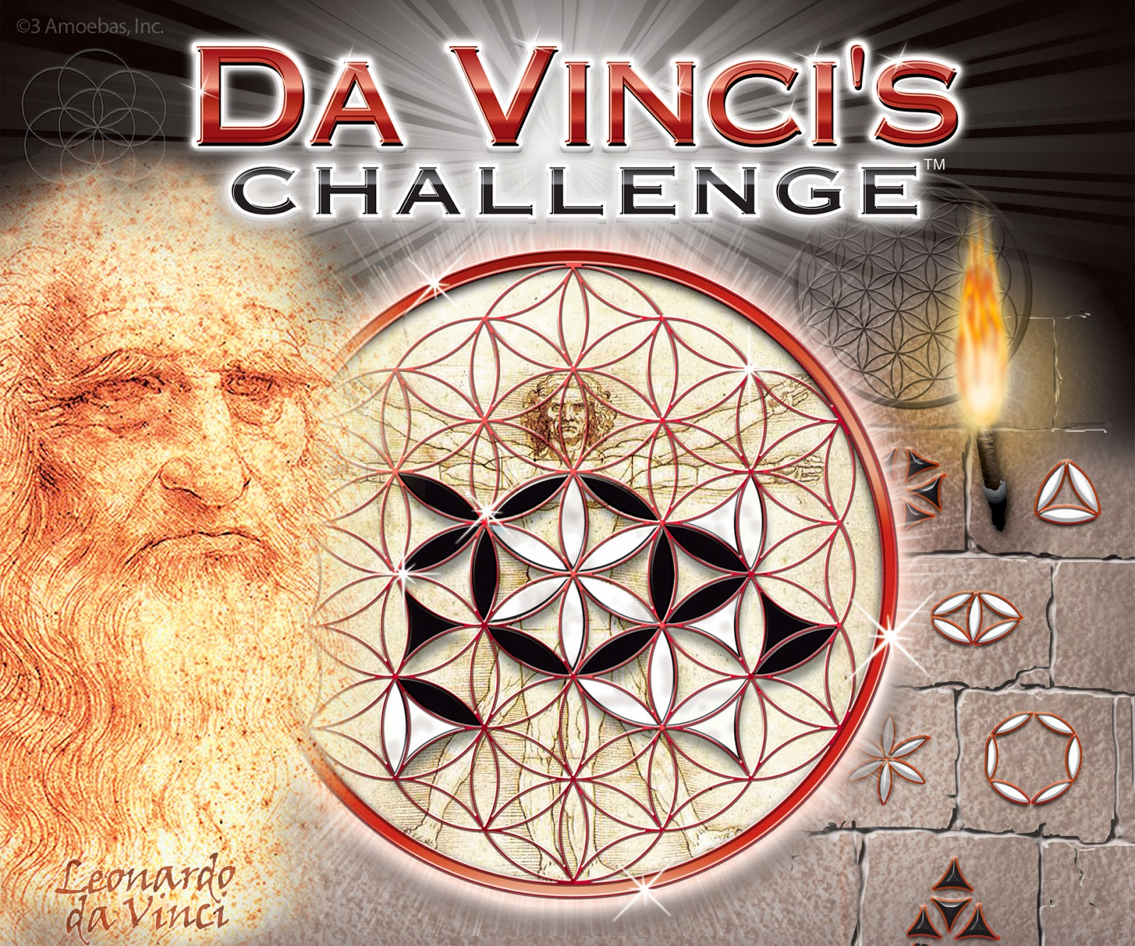 The Monkey Buddha: Flower of Life animation Da Vinci Symbols