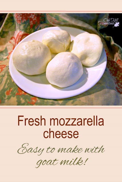 Make mozzarella cheese from goats milk