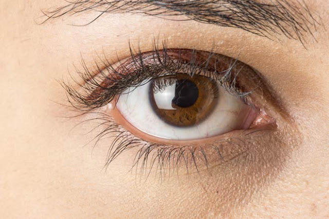 interesting facts about eyes