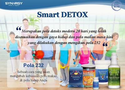 Smart Detox Dan Manfaatnya Untuk Kesehata Kita Semua