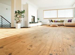 parchet lemn sectiune longitudinala natura