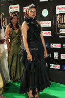 Rakul Preet Singh Sizzles in a Sleeveless Dress at IIFA Utsavam Awards 2017  Day 2  Exclusive 83.JPG