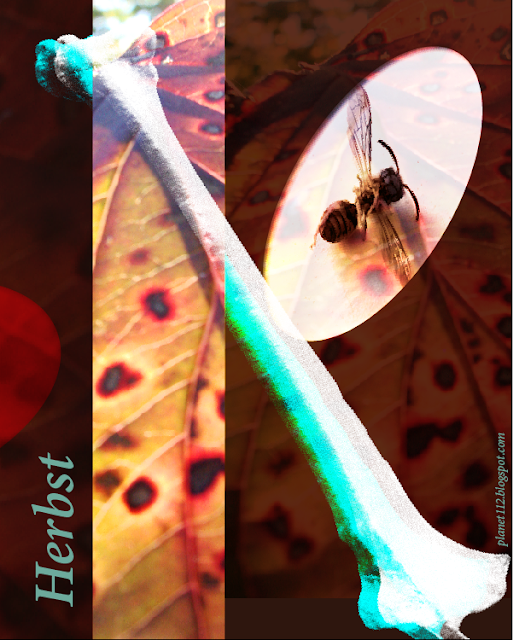 Digitale Collage zum Thema Herbst