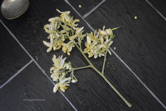 Drumstick Flowers Pulao | Murunga poo Sadham | Moringa Flowers Rice