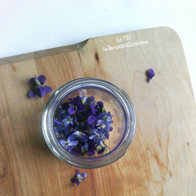 Fiori di violetta