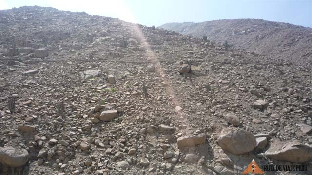 Camino Inca Chontay a California o Qhapac Ñan