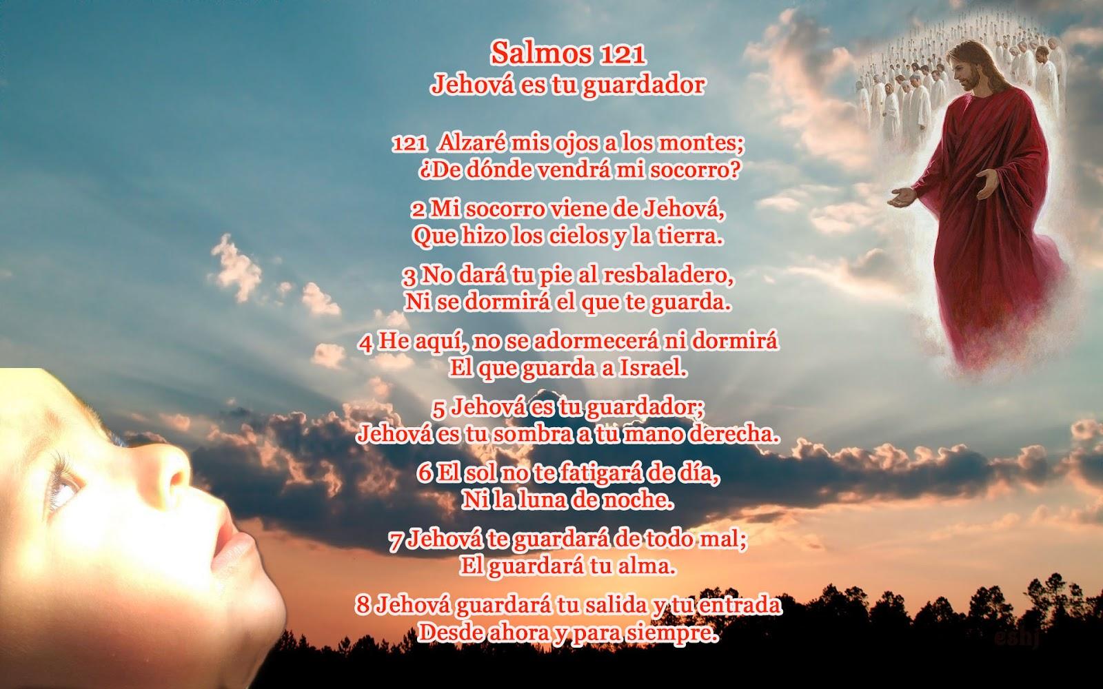 salmo - photo #44