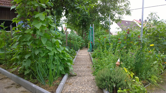 Blick von dem Garten-Bänkla durch den Gemüsegarten (c) by Joachim Wenk