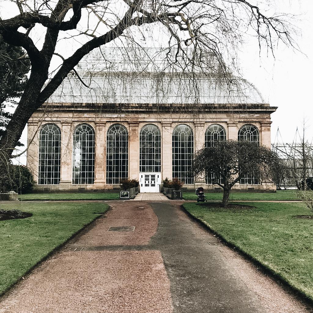 Spacery po Edynburgu - Ogród Botaniczny {20+ zdjęć}