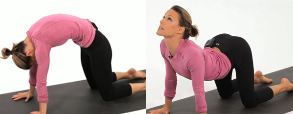Gerakan Yoga Marjarasana Anekaragamsehat
