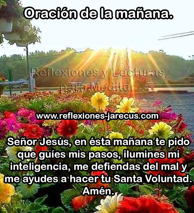 Oración de la mañana Señor Jesús , en esta mañana te pido que guíes mis pasos, ilumines mi inteligencia, me defiendas del mal y me ayudes a hacer tu santa voluntad. Amen.