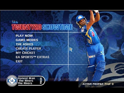 EA Sports Cricket 2007 PC Game Free Download