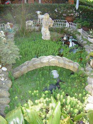 Mi jardin y mi huerto mi estanque de peces for Estanque de jardin casero