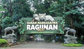 Kebun Binatang Ragunan Jakarta, Taman Margasatwa Indonesia