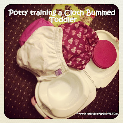 potty training a cloth bummed toddler
