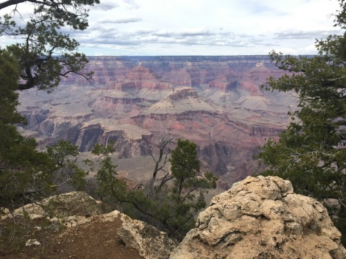 Visiting National Parks with Kids. Tips from a Roadschooler  #homeschool