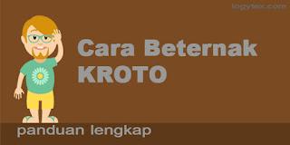 http://logytex.blogspot.com/2016/04/cara-ternak-kroto.html
