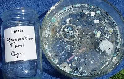 Microplástico coletado no Giro do Pacífico Norte com rede de arrasto para plâncton. Nessa região do Oceano Pacífico o plástico supera o zooplâncton em 6x1