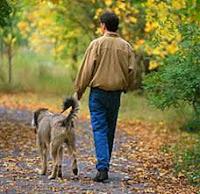 poemas+dia+del+animal+mascotas+perros
