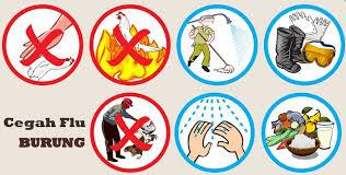mencegah flu burung