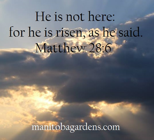 Matthew 28:6a He Is Risen!