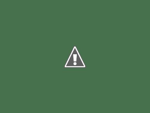 道路脇の登山口