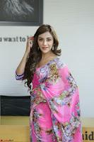 Angela Krislinzki Rogue Movie Fame Telugu Actress in Saree Backless Choli 079.JPG