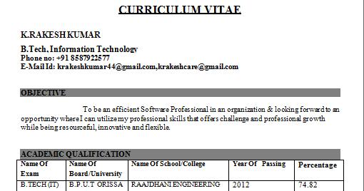 Software Engineering Director Resume Sample  construction with     software engineer resume examples resume downloads