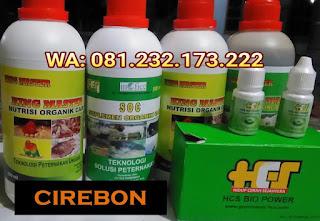 Jual SOC HCS, KINGMASTER, BIOPOWER Siap Kirim Cirebon