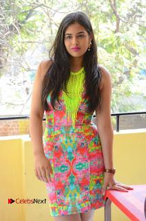 Telugu Actress Prasanna Stills in Short Dress at Inkenti Nuvve Cheppu Press Meet Stills  0026.JPG