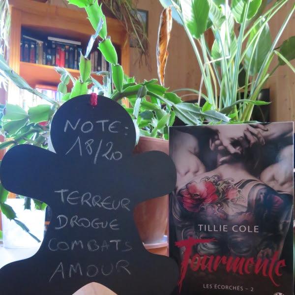 Les écorchés, tome 2 : Tourmente de Tillie Cole