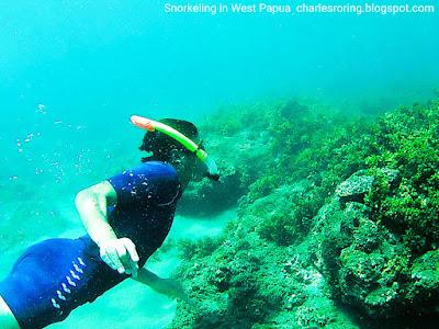 Wisata Bahari di Papua Barat