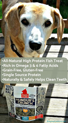 Hundurs Crunch fish treats for dogs