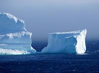 Iceberg near Ferryland