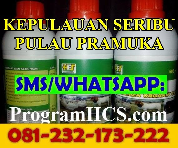 Jual SOC HCS Kepulauan Seribu Pulau Pramuka