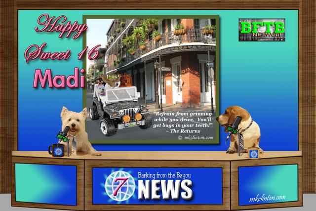 BFTB NETWoof dog news wishes Madi a happy sweet 16 birthday