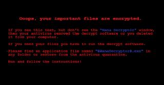 WannaCry.NET