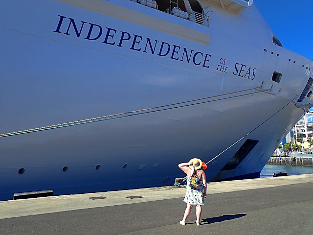Independence of the Seas Royal Caribbean Cruise Ship Travel Blogger