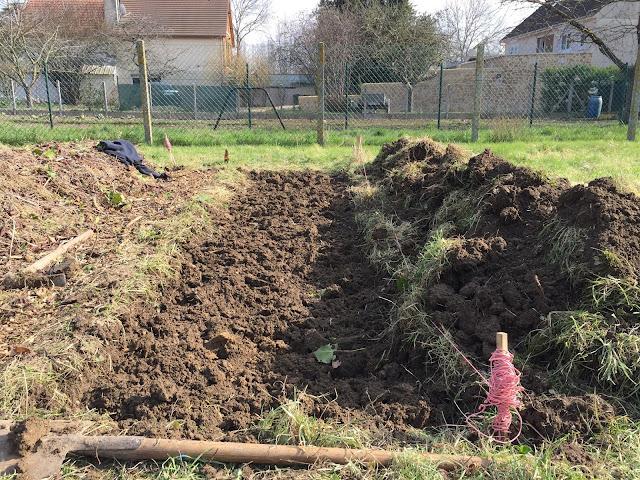 aggradation du sol par le décompactage en permaculture