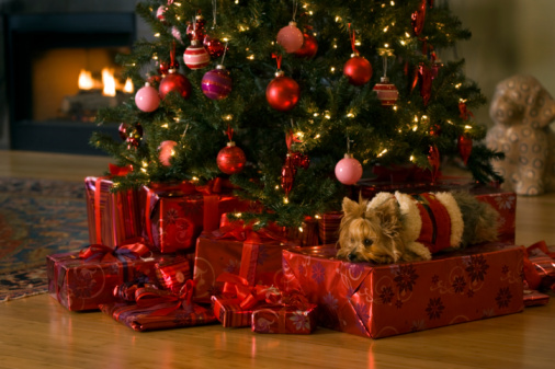 so here are 5 of the best heartwarming christmas wishes you can send to your far away family