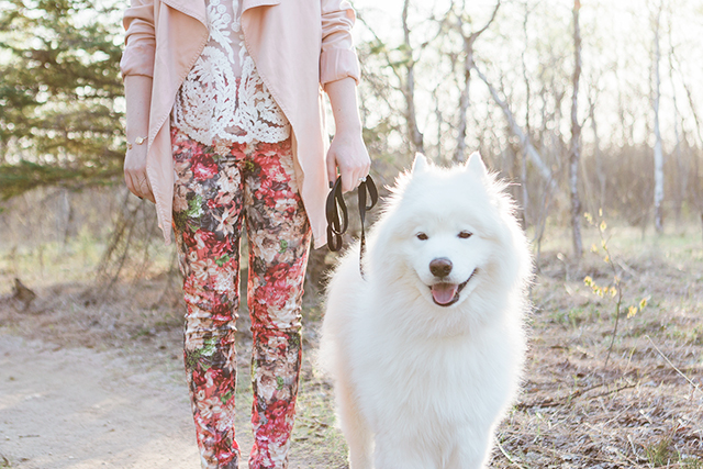 "How to wear floral pants + all about Canadian brand ""I Love Tyler Madison""."