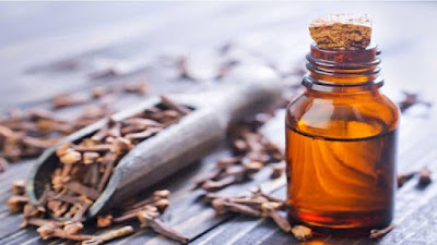 How does clove oil help dry socket?
