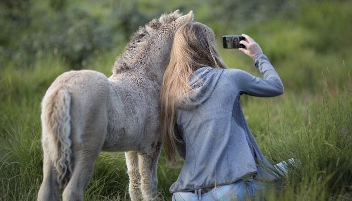 Bahaya! Kecanduan Selfie Bisa Bikin Penyakit Mental