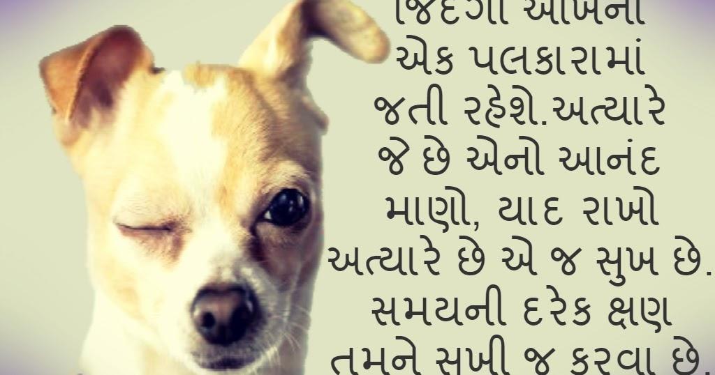 gujarati motivational quotes on life gujarati status