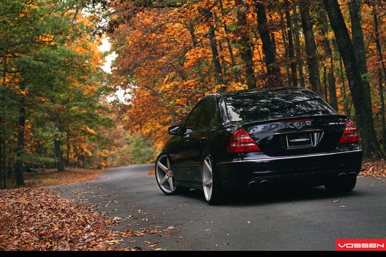 Mercedes Benz Amg >> Car Wallpapers: Mercedes-Benz E55 AMG