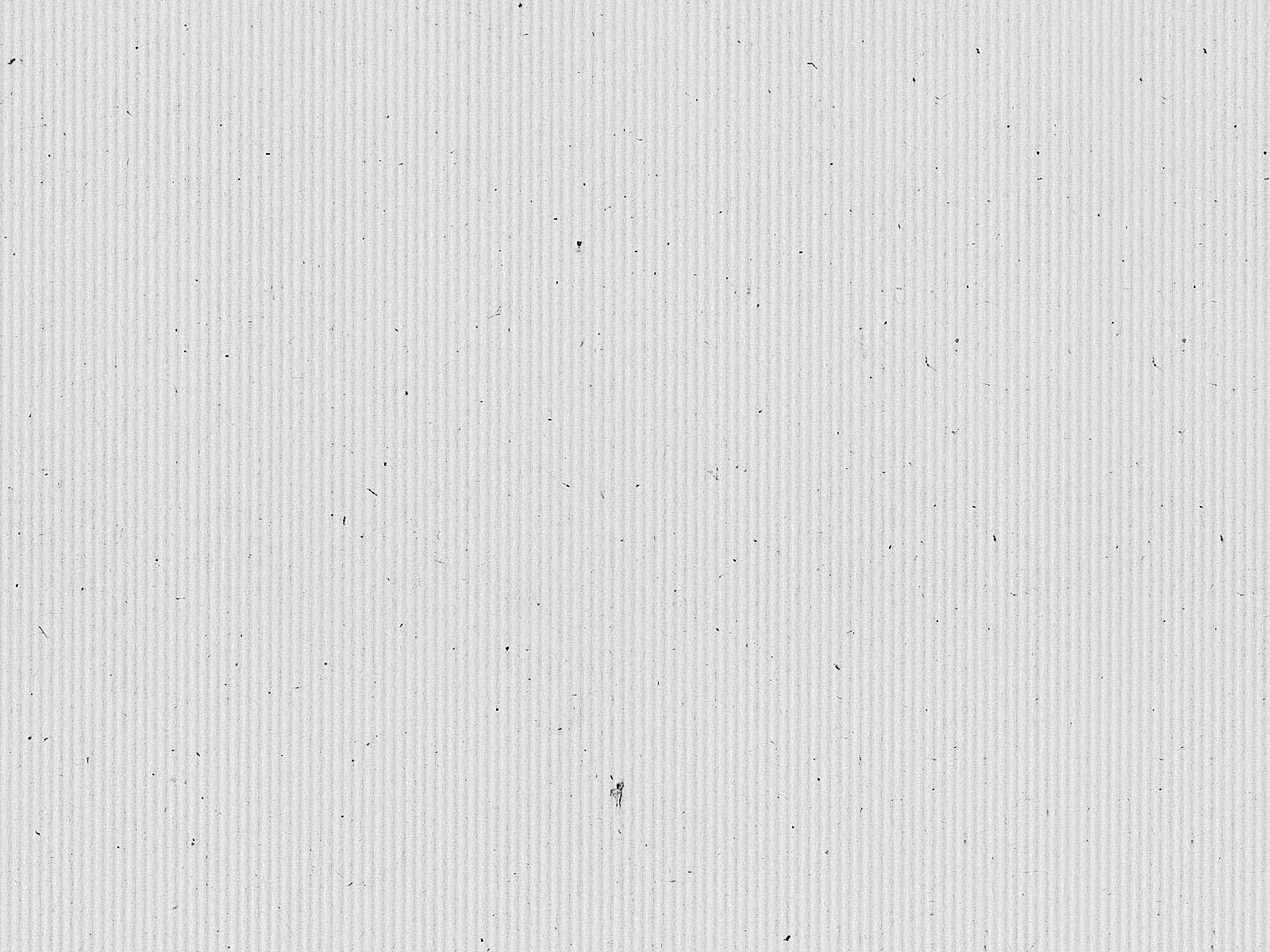 White Kraft Paper Texture + (Maps)