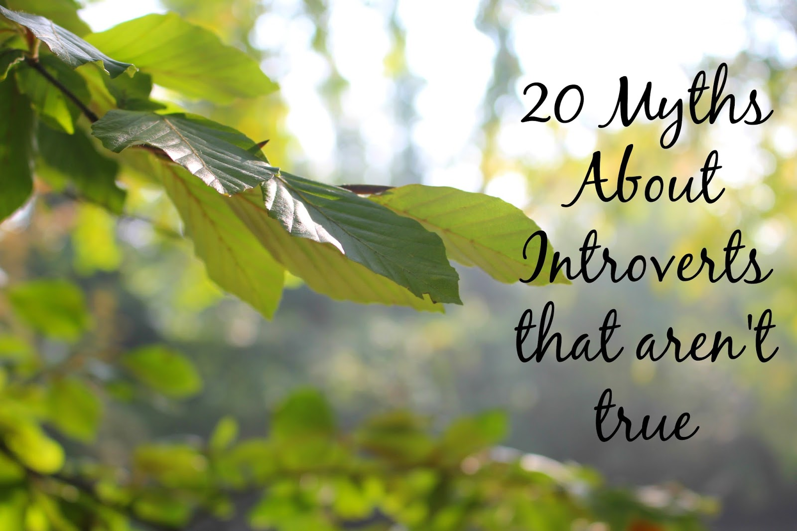 20 Myths About Introverts that aren't true lists lifestyle blogger UK buzzfeed