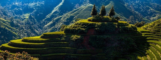 Unique terraces in Ha Giang 1