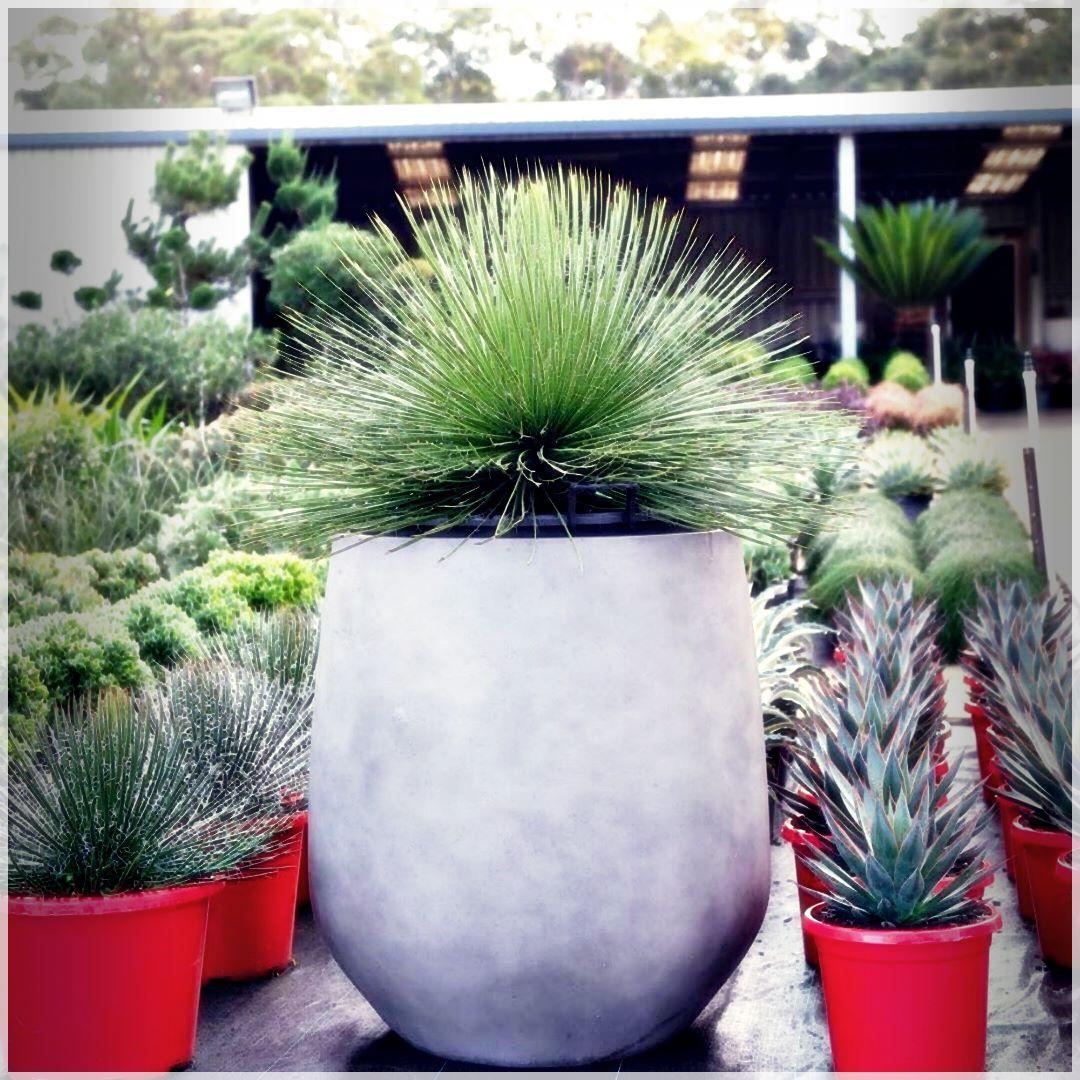 GardenPots-10180582780